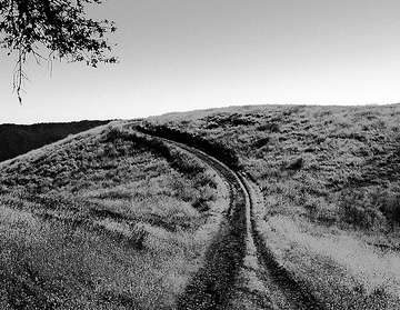 black-and-white-path